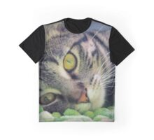Adorable Kitten Graphic T-Shirt