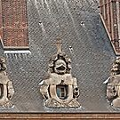 Guardians On The Roof - 2 © by © Hany G. Jadaa © Prince John Photography