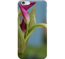 Pink Lily Bud iPhone Case/Skin