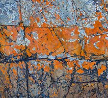 Jointed Rock Abstract. by Bette Devine