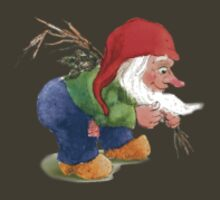 La Chouffe Gnome Small by Schokky