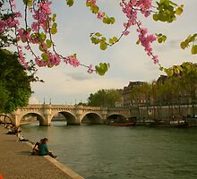 So Much Beauty In Paris .. It's In Seine by Michael Matthews