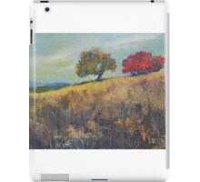 Delaware Landscape Sketch iPad Case/Skin