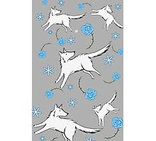 Wolves & Winter Roses Photographic Print