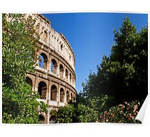 Summer morning view of the Colosseum Poster