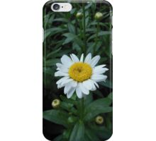 A Single Daisy iPhone Case/Skin