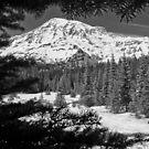 Hike to Mount Rainier by Harv Churchill
