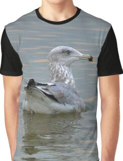 Larus Delawarensis - Young Ring-Billed Gull | Eatons Neck, New York Graphic T-Shirt