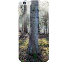 Morning Light. iPhone Case/Skin