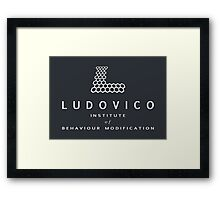 The Ludovico Institute Framed Print