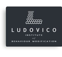 The Ludovico Institute Canvas Print