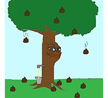 Pepe Piss and Poop tree Photographic Print