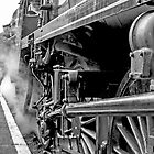 """Steam Engine """"All Aboard"""" by mhfore"""