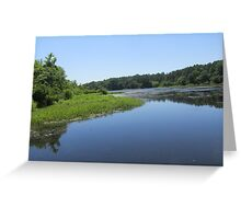 natures reflection Greeting Card