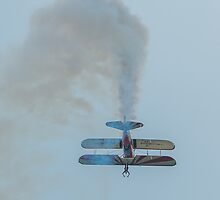 Wing Walker by Mark Bangert