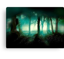 In What Dimension.... Canvas Print