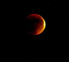 Lunar Eclipse Blood Moon on a Starry Night, San Diego, 09.27.2015 by Heather Friedman