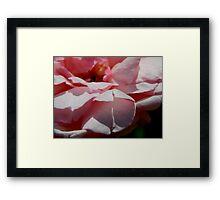 Rose Garden Series ~ 5 Framed Print