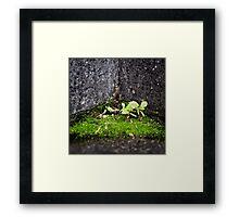 { Corners: where the walls meet #02 } Framed Print