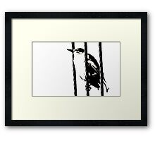 Little Sparrow bird perched on sky high cables Framed Print