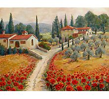 Red Poppy Road Villas Photographic Print