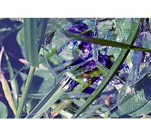 The world in a soap bubble. Photographic Print