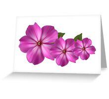 Flowers Violes Greeting Card