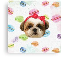 Shitzhu Dog with Headband Canvas Print