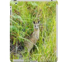 Wild Kangaroo, Coombabah Wetlands, Gold Coast, Australia. iPad Case/Skin