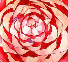 Pink Camellia abstract flower by grosselart