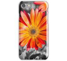 Splashing Daisies iPhone Case/Skin