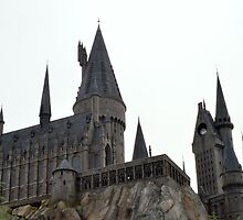 Hogwarts School of Witchcraft and Wizardry by AngelaHRey