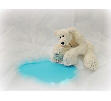Handmade bears from Teddy Bear Orphans - Peppy Polar Bear Photographic Print