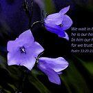 Psalm 33:21-22 by Rainydayphotos