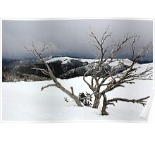 A snowstorm on a mountainside in Australia Poster