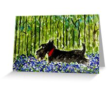 Scottie Dog 'Stroll in Bluebell Wood' Greeting Card