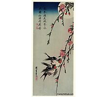 Moon Swallows and Peach Blossoms - Hiroshige Ando - 1850.tif Photographic Print