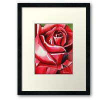 Crimson Glory red rose flower art Framed Print