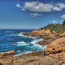 Bermagui Rocky Coast by Michael Matthews