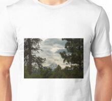 The Framing Of Mount Hood ©  Unisex T-Shirt