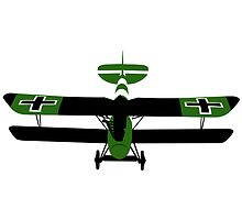 WWI Albatros DV Biplane by AlphaEchoing