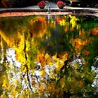 The reflecting pool at WInterthur by cclaude