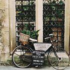 Vintage Bicycle by Indea Vanmerllin