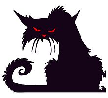 Angry Black Cat by kwg2200