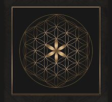 The Flower Of Life II by Daniel Watts