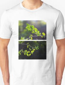 Leaves and Sun Unisex T-Shirt