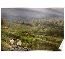 One day, this will all belong to ewe Poster