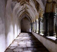 Muckross Abby Cloister Killarney  Ireland by woodnimages