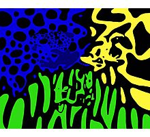 Poison Dart Frogs Photographic Print