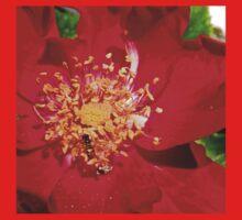 Bitty Bee on Red Flower Kids Tee